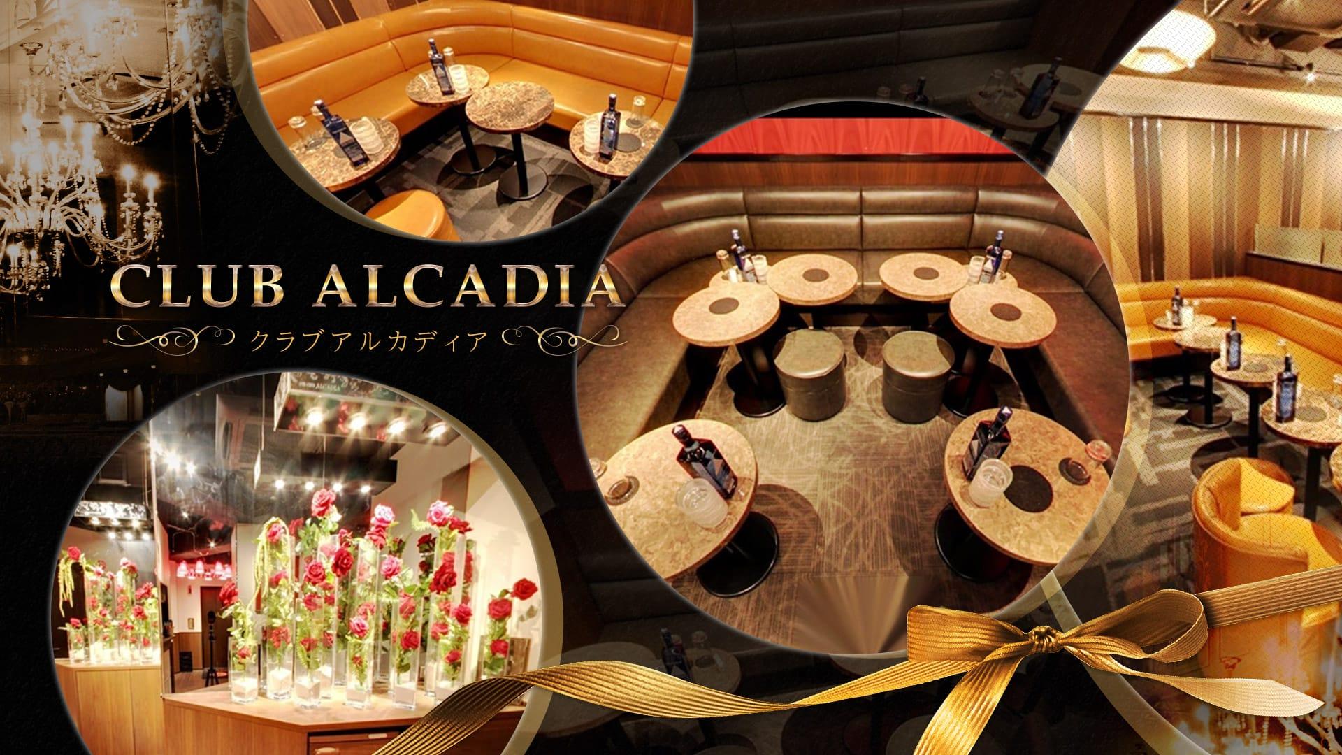 CLUB ALCADIA~クラブ アルカディア~ TOP画像