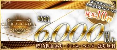CLUB ALCADIA~クラブ アルカディア~【公式求人情報】(立川キャバクラ)の求人・バイト・体験入店情報