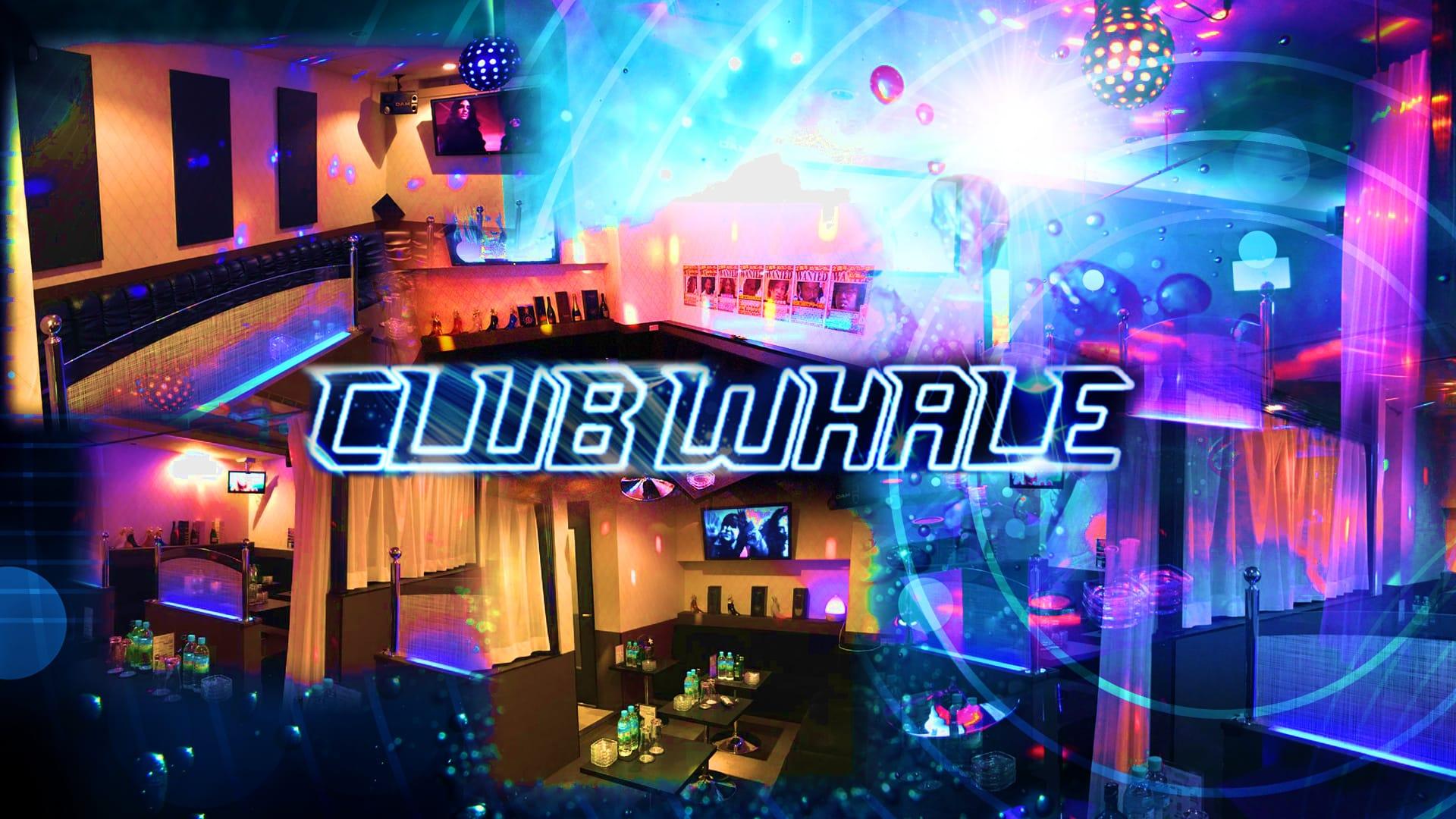 CLUB WHALE(クラブ ホエール) 小作キャバクラ TOP画像