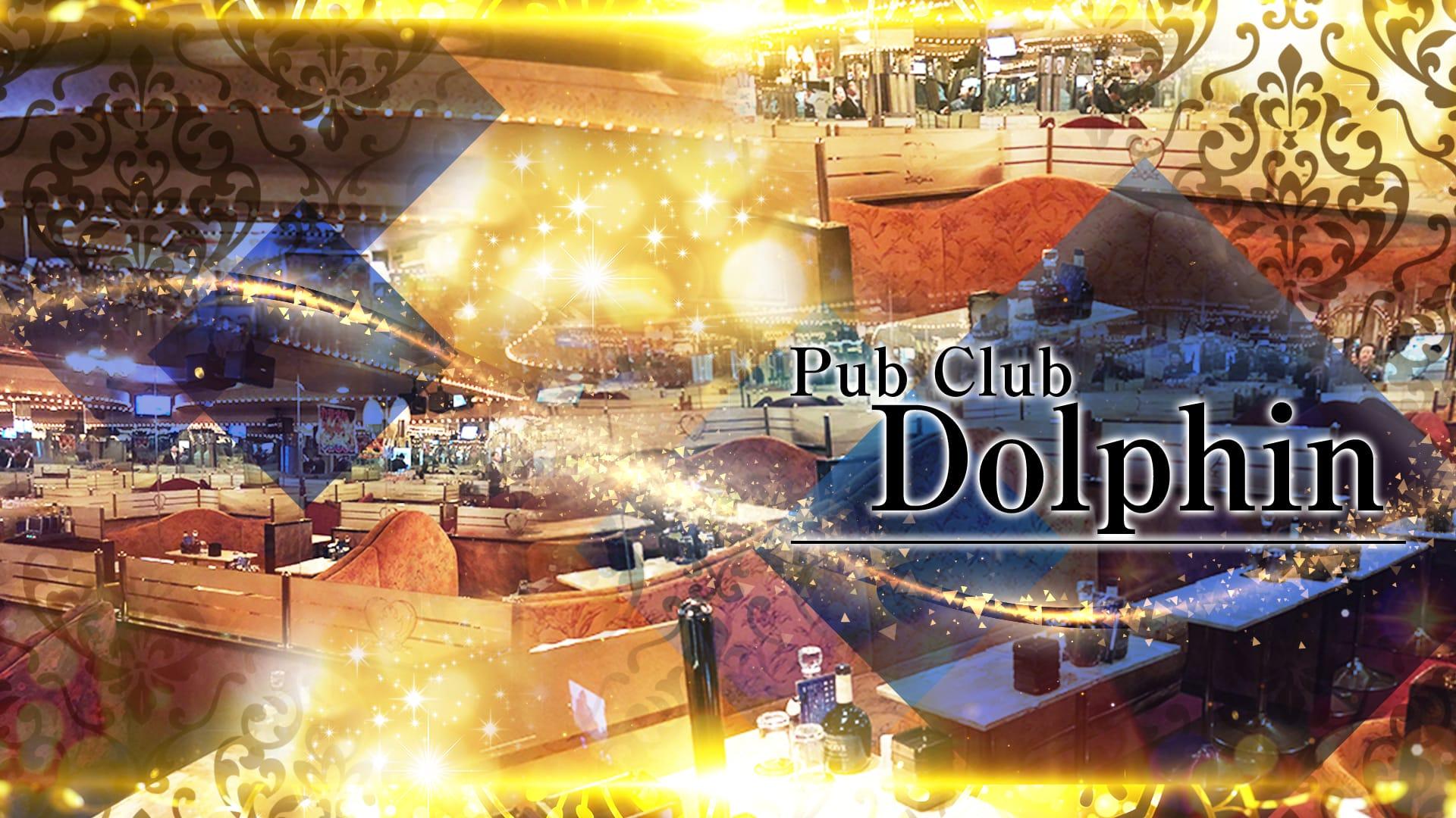 PUB CLUB Dolphin(ドルフィン)【公式求人・体入情報】 品川キャバクラ TOP画像