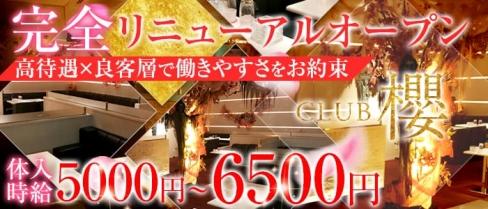 Club櫻~クラブ サクラ~【公式求人情報】(八王子キャバクラ)の求人・バイト・体験入店情報