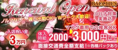 【大井町】Girl's Bar BACCHUS(バッカス)【公式求人情報】(大井町ガールズバー)の求人・バイト・体験入店情報