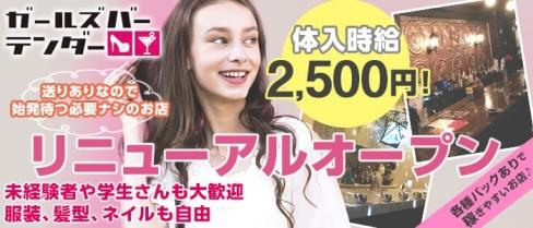 GirlsBar テンダー【公式求人情報】(千葉ガールズバー)の求人・体験入店情報