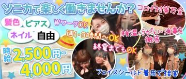 Girl's Bar Sonica(ソニカ) 【公式求人情報】(千葉ガールズバー)の求人・バイト・体験入店情報