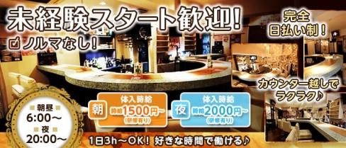 Girls Bar An(杏)【公式求人情報】(新宿ガールズバー)の求人・バイト・体験入店情報