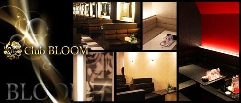 Club BLOOM(ブルーム)【公式求人情報】(難波キャバクラ)の求人・バイト・体験入店情報