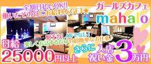 ガールズカフェ mahalo(マハロ)【公式求人情報】 バナー