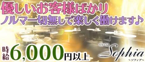 New Club Sophia(ソフィア)【公式求人情報】(葛西キャバクラ)の求人・バイト・体験入店情報