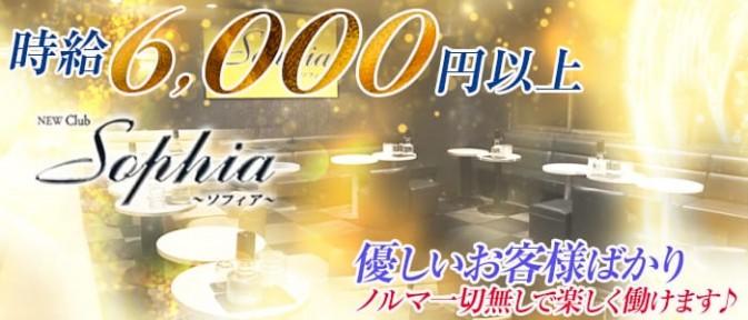 New Club Sophia(ソフィア)【公式求人情報】