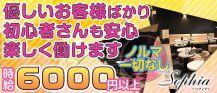 New Club Sophia(ソフィア)【公式求人情報】 バナー