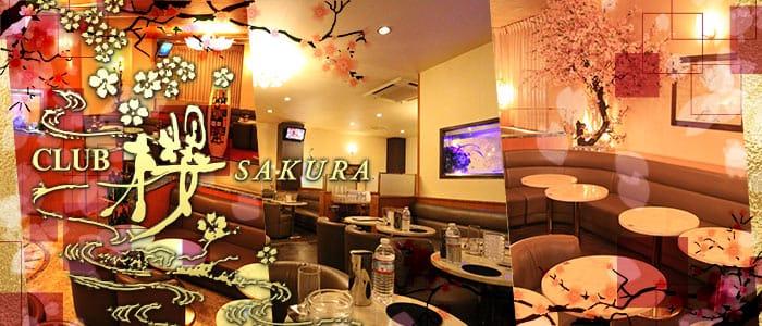 CLUB 櫻 SAKURA(サクラ) バナー