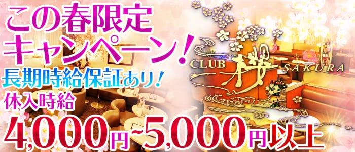 CLUB 櫻 SAKURA(サクラ) 川越キャバクラ バナー