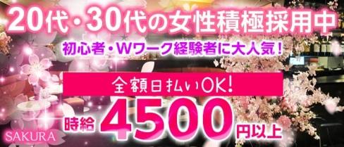 CLUB 桜(サクラ)【公式求人情報】(草加姉キャバ・半熟キャバ)の求人・バイト・体験入店情報