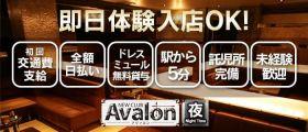 club  Avalon(アヴァロン) 栄キャバクラ 即日体入募集バナー