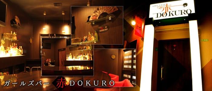 赤DOKURO~アカドクロ~ バナー