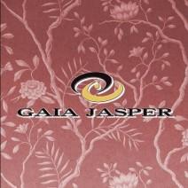 GAIA JASPER~ガイア ジャスパー~