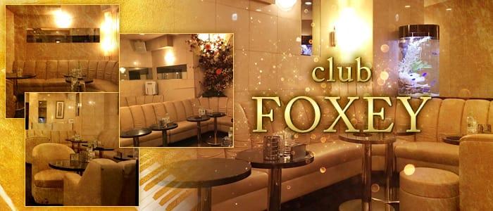 FOXEY(フォクシー) バナー