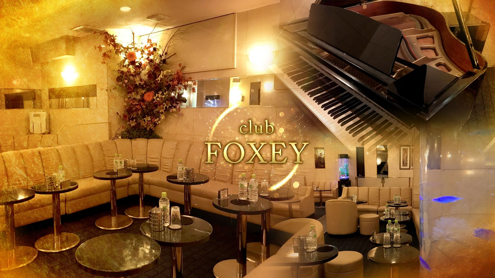 FOXEY(フォクシー) TOP画像