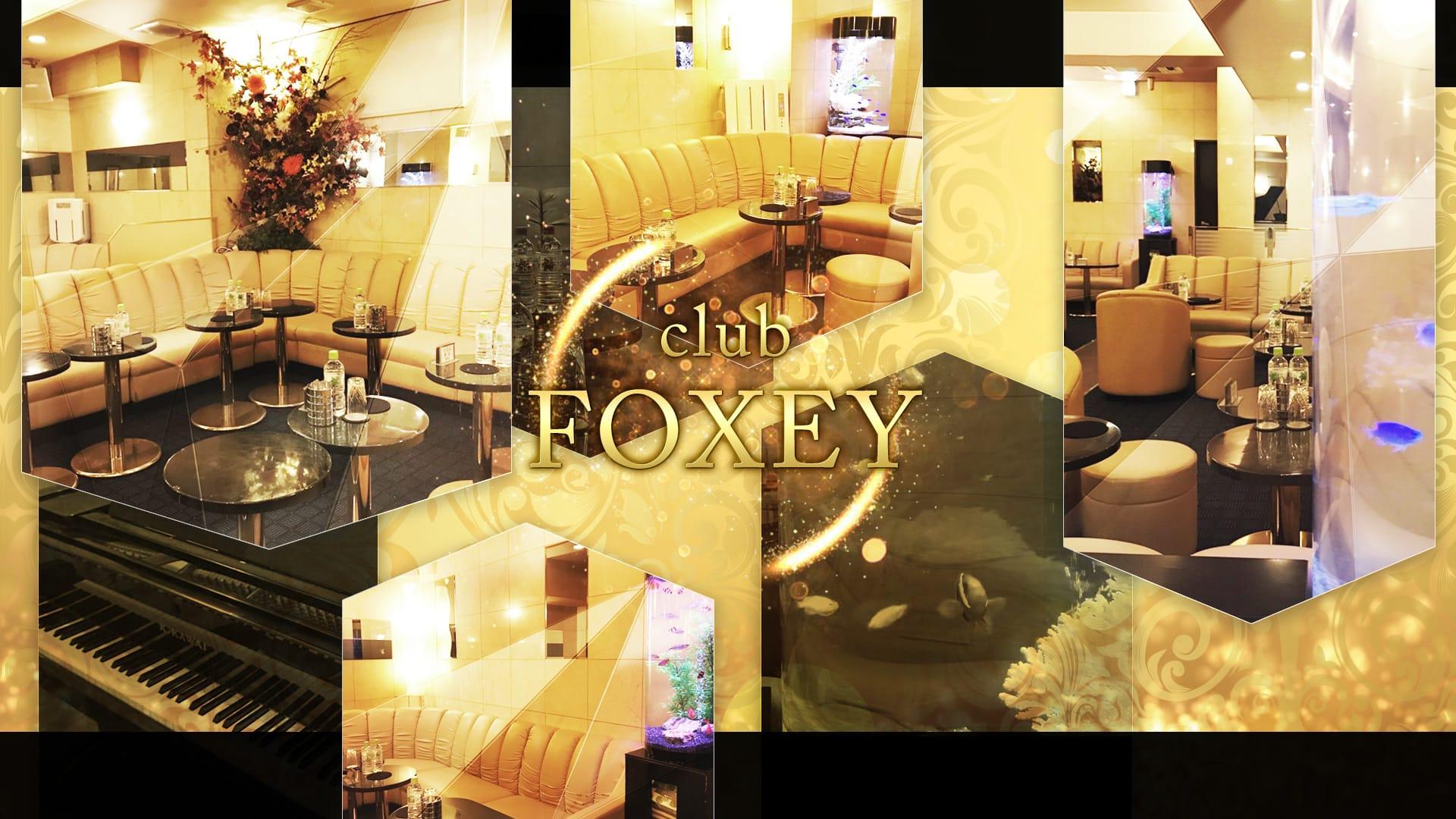 FOXEY(フォクシー) 川崎キャバクラ TOP画像