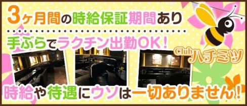 CLUB ハチミツ【公式求人情報】(所沢キャバクラ)の求人・バイト・体験入店情報