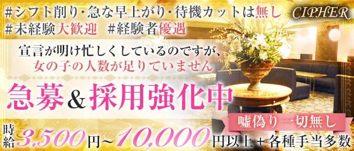 CIPHER(サイファ)【公式求人・体入情報】 三宮ラウンジ バナー