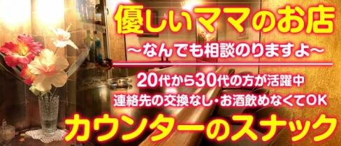 リリアン【公式求人情報】(藤沢スナック)の求人・バイト・体験入店情報