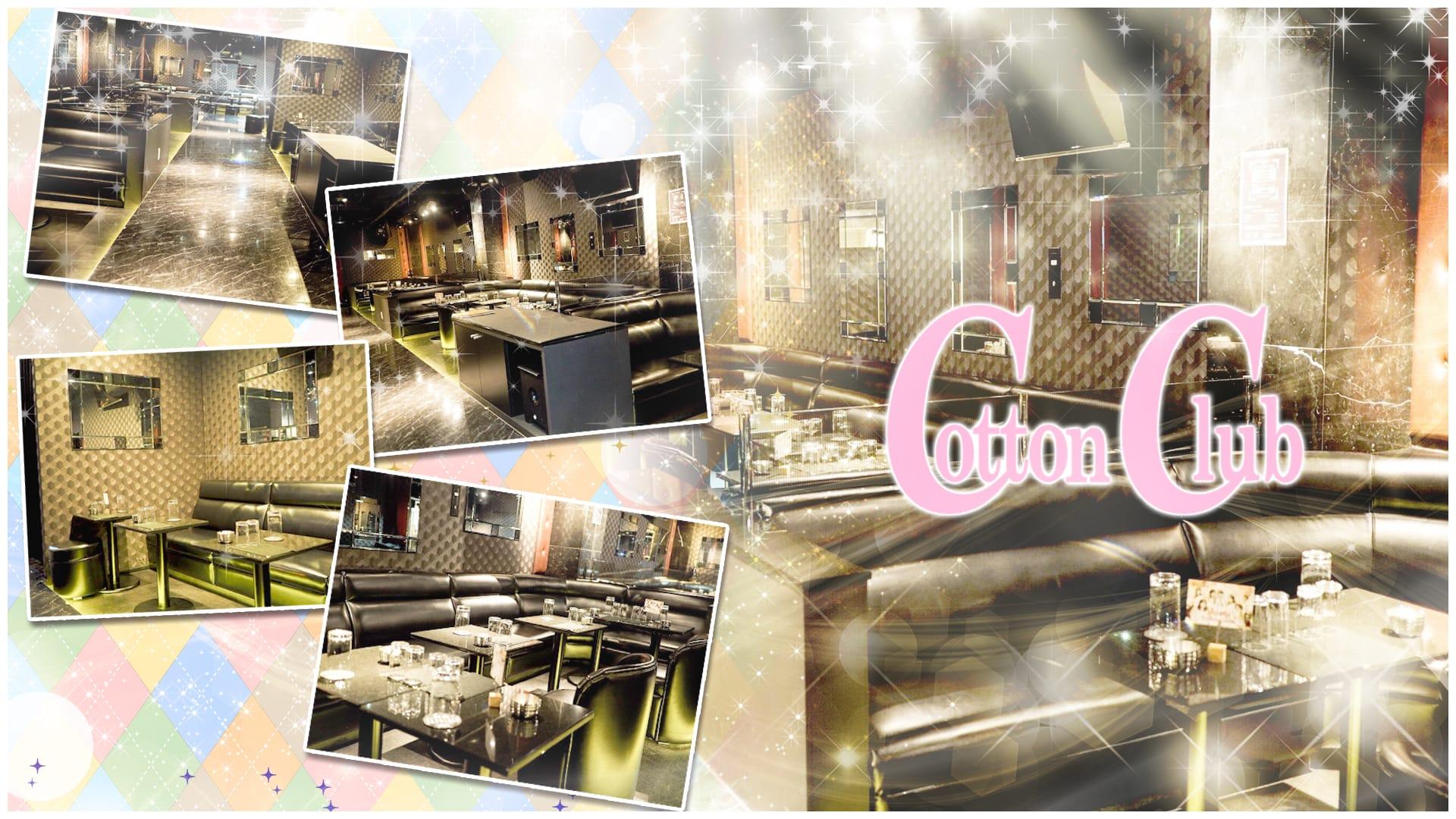 Cotton Club (コットンクラブ) 上野キャバクラ TOP画像