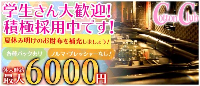 Cotton Club (コットンクラブ) 上野キャバクラ バナー