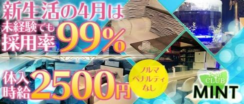 ミント【公式求人情報】(横須賀クラブ)の求人・バイト・体験入店情報