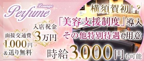 Lounge Perfume(パフューム)【公式求人情報】(横須賀ラウンジ)の求人・バイト・体験入店情報