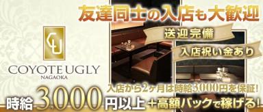 COYOTE UGLY(コヨーテアグリー)【公式求人・体入情報】(長岡キャバクラ)の求人・バイト・体験入店情報