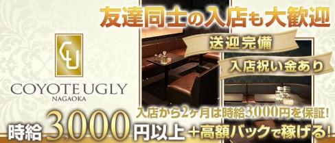 COYOTE UGLY(コヨーテアグリー)【公式求人・体入情報】(長岡キャバクラ)の求人・体験入店情報