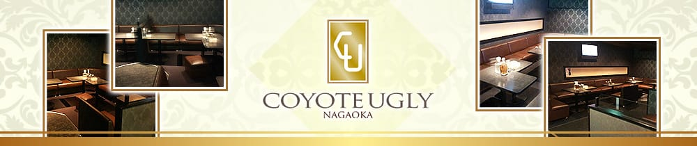COYOTE UGLY(コヨーテアグリー)【公式求人・体入情報】 長岡キャバクラ TOP画像