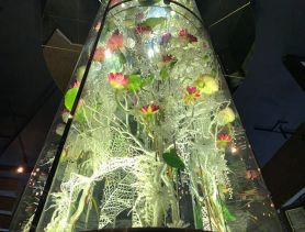 Lotus(ロータス) 船橋キャバクラ SHOP GALLERY 3