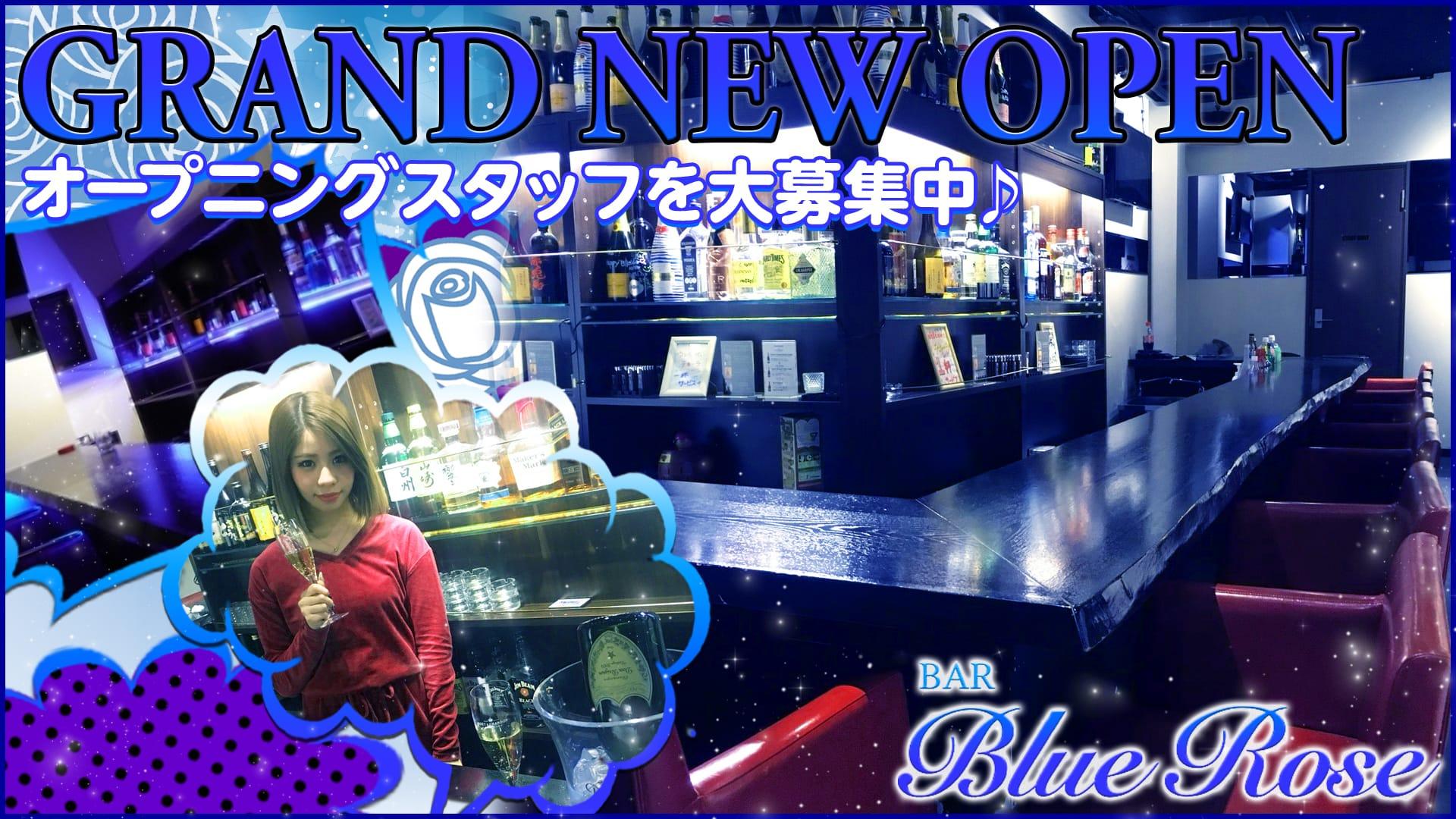 BAR BLUE ROSE〜ブルーローズ〜 六本木ガールズバー TOP画像