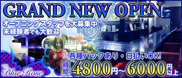 BAR BLUE ROSE〜ブルーローズ〜 バナー