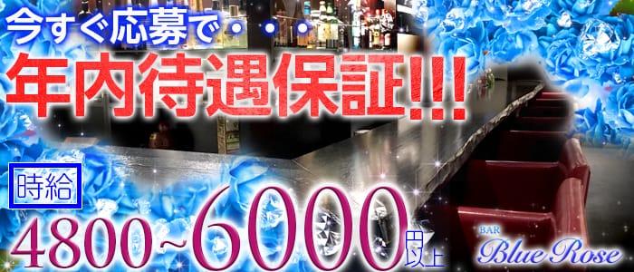 BAR BLUE ROSE〜ブルーローズ〜 六本木ガールズバー バナー
