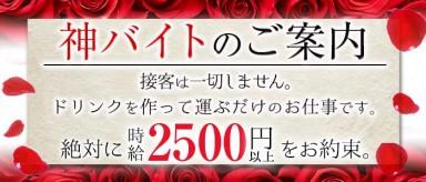 N LOUNGE(エヌラウンジ)【公式求人情報】(銀座ガールズバー)の求人・バイト・体験入店情報