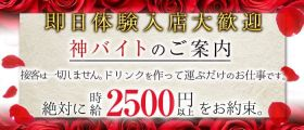 N LOUNGE(エヌラウンジ) 銀座ガールズバー 即日体入募集バナー