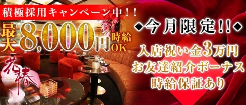 横浜花椿【公式求人情報】(横浜キャバクラ)の求人・バイト・体験入店情報