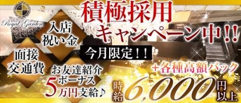ROYAL GARDEN~ロイヤルガーデン~【公式求人情報】(関内キャバクラ)の求人・バイト・体験入店情報