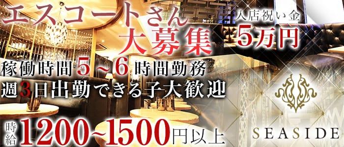 新横浜シーサイド 新横浜キャバクラ バナー