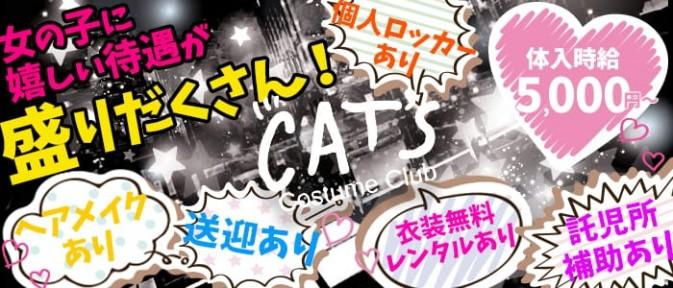 Cat's (キャッツ)【公式求人情報】