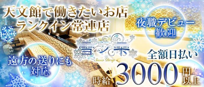倶楽部 雪ノ雫(ユキノシズク)【公式求人・体入情報】 天文館キャバクラ バナー