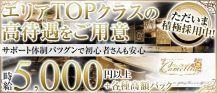 New Club Camellia(カメリア)【公式求人情報】 バナー