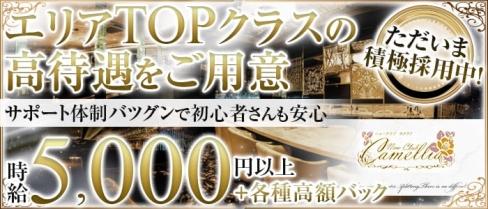 New Club Camellia(カメリア)【公式求人情報】(天文館クラブ)の求人・バイト・体験入店情報