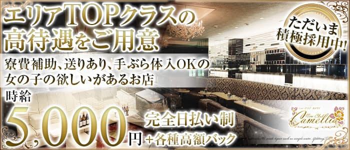 New Club Camellia(カメリア)【公式求人・体入情報】 天文館クラブ バナー