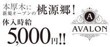AVALON(アヴァロン)【公式求人情報】 バナー