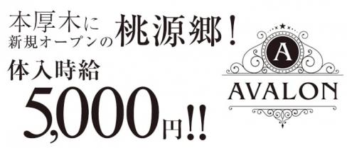 AVALON(アヴァロン)【公式求人情報】(本厚木キャバクラ)の求人・バイト・体験入店情報