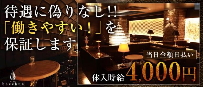 CLUB bacchus (クラブ バッカス) 片町キャバクラ バナー